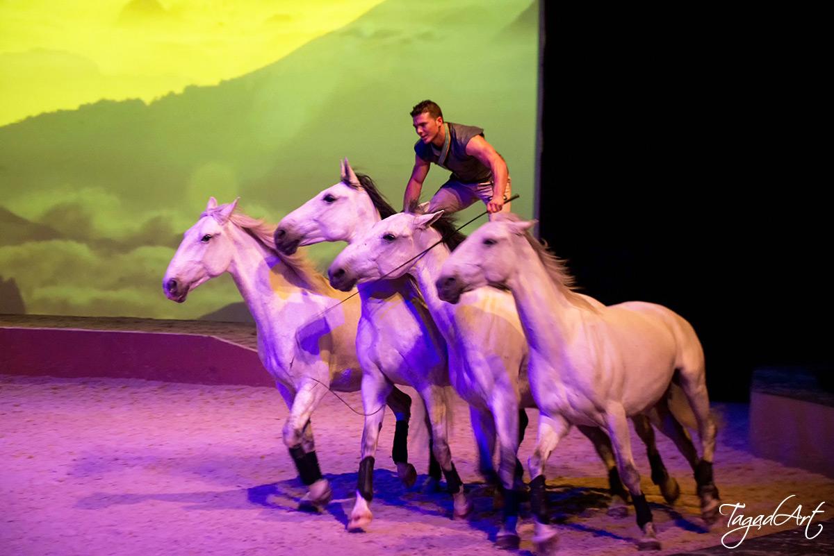 Knokke-Heist accueille la premi��re belge de Tagad'Art
